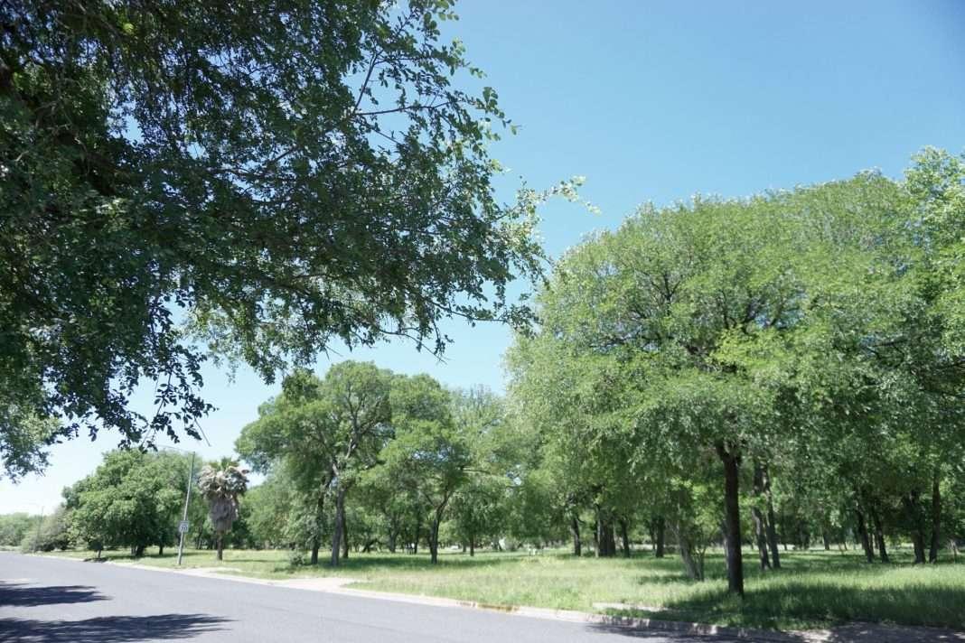The Onion Creek neighborhood