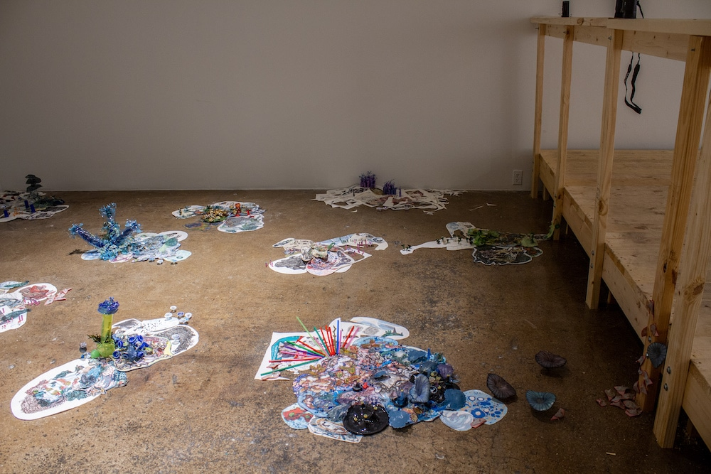 "Installation view of Margaret Craig's ""Sea Islands"" at Blue Star Contemporary."