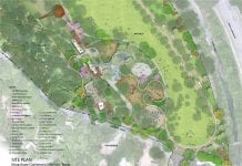 The site plan for the Kingsbury Commons improvement project. Image courtesy Pease Park Conservancy.