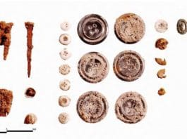 1. Representative hardware from Burial 1 includes nails, nail fragments, diamond-shaped screw caps, and screw cap fragments. Personal items include one gold-plated collar stud and two fragments of a single wood button.