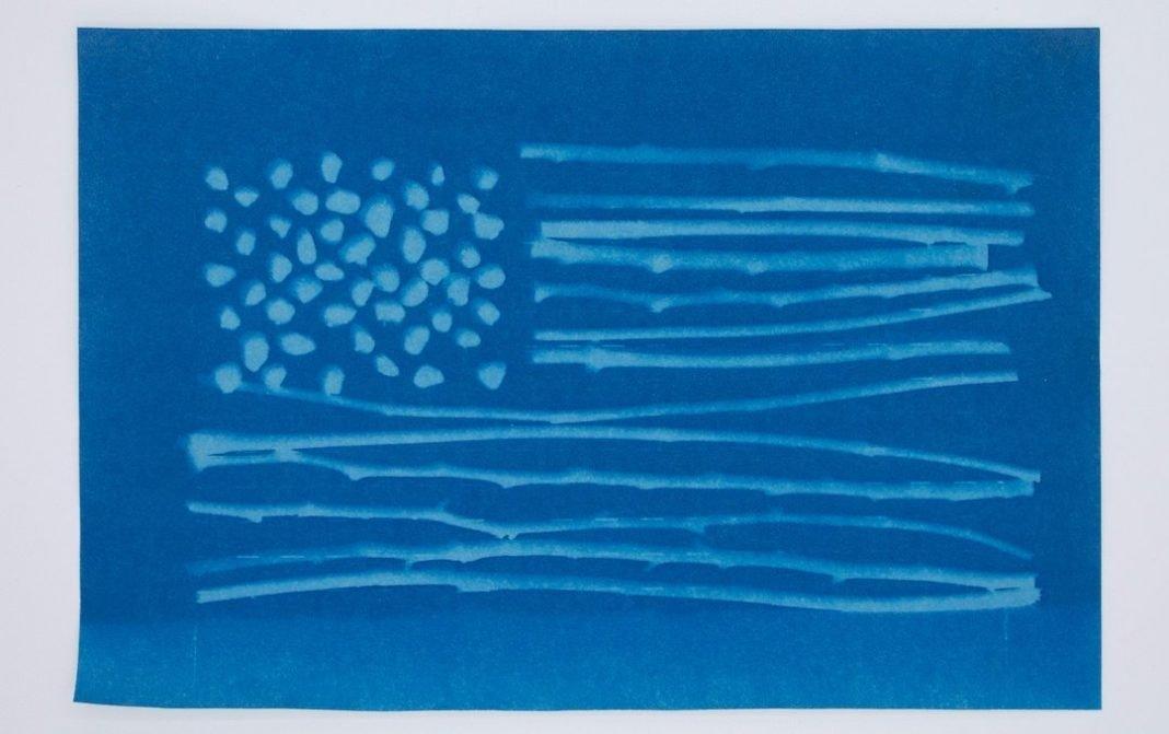 Untitled (foraged flag)