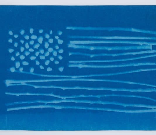 Untitled (foraged flag)